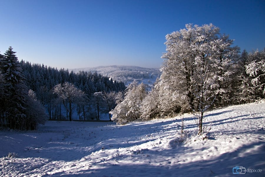 Winterparadies in Zinnwald