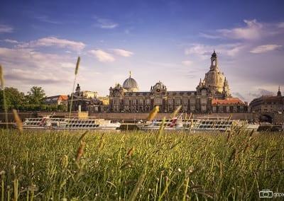 Dresden im Juni 2012.