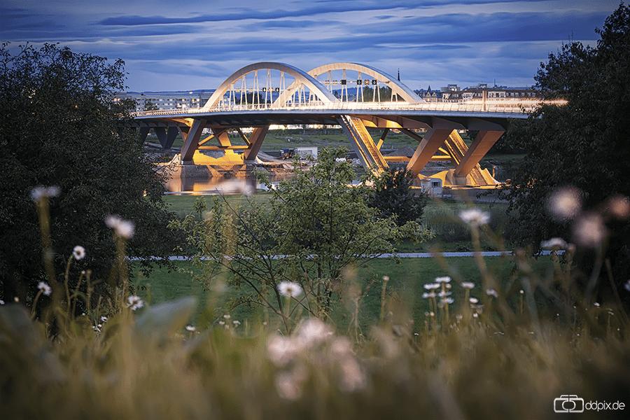 Die Waldschlößchenbrücke am Abend