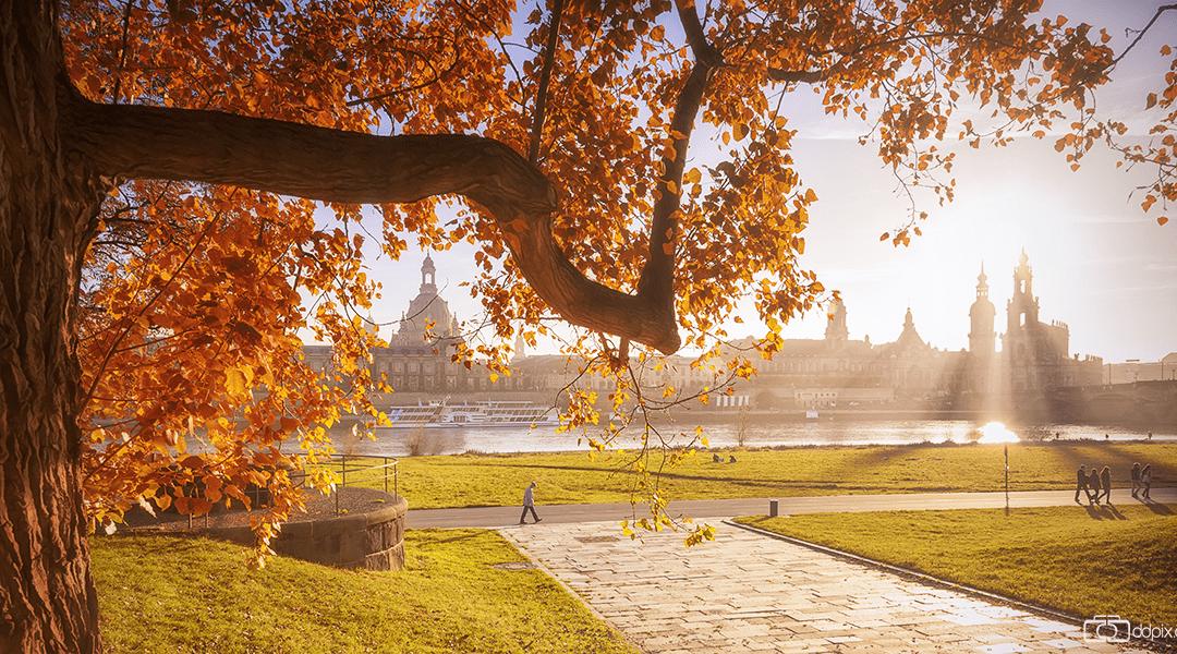 diesiger Herbstabend